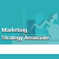Marketing Strategy Associate