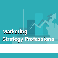 Marketing Strategy Professional